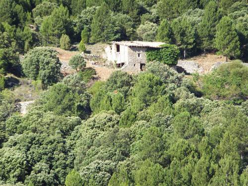 Peñarroya de Tastavins - Farm of 140 acres