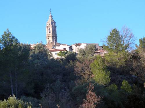 Torre del Compte - Rural property of 79.000 m