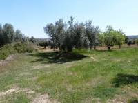 Alcañiz - Plot of 3.000m2 farmland