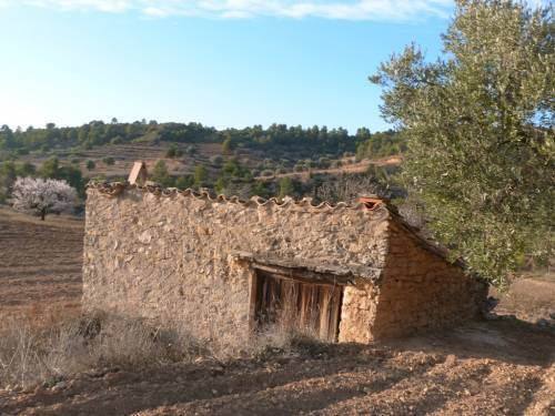 Valderrobres - Plot of 20.000m2 farmland