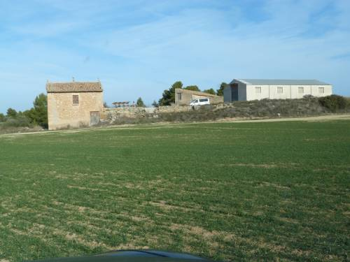 Torre del Compte - 40 hectares of farmland