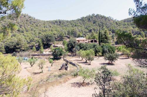 Belmonte de San José - 7-hectare farmland of approximately 150 m2