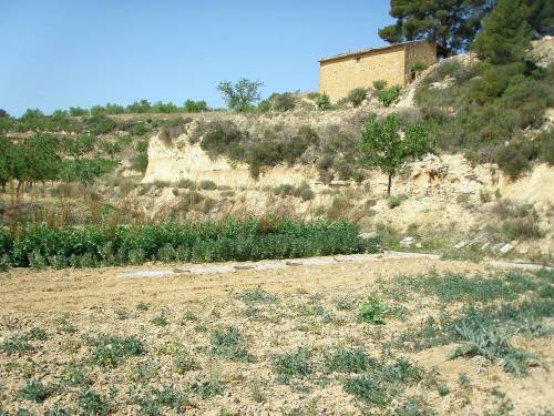 Calaceite - Property of 11,5 hectares