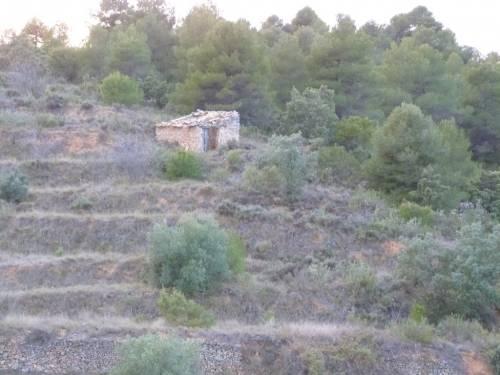 Valderrobres - Small farm of about 7.000m2